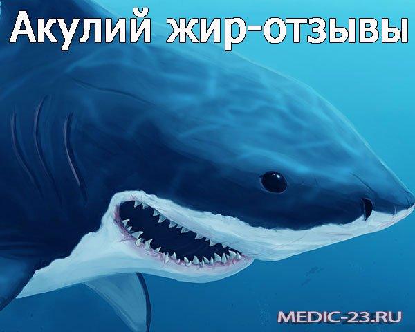 Акулий жир-отзывы