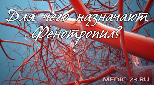 Фенотропил: отзывы врачей