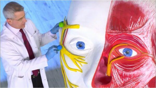 Лечение неврита лицевого нерва